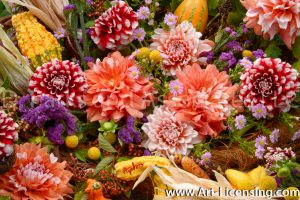 0112S-Dahlias and Pumpkins