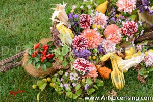 0140S-Dahlias and Pumpkins
