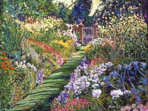 Lush Floral Pathway