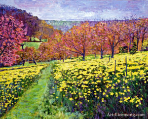 Fields of Golden Daffodils