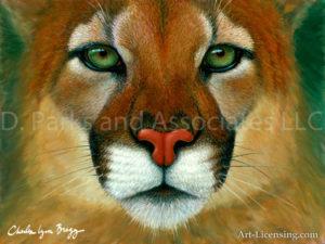 Puma Face