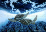 Turtle World