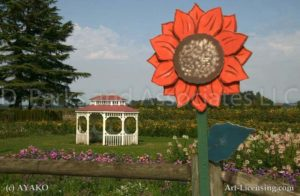 00016-Gazebo in the Flower Field