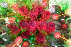 00927-Christmas Red Roses and Candles