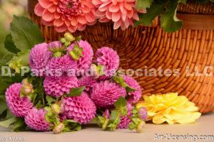 0211-Pink Dahlia Bouquet