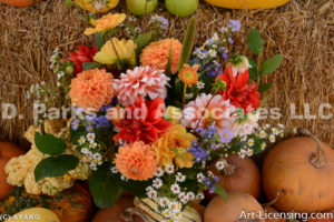 0503-Dahlia Bouquet-Pumpkins-Autumn
