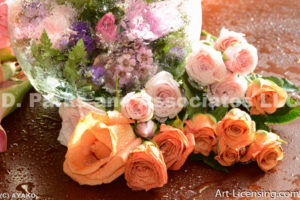 0653-Orange and Pink Roses