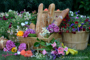0780-Flower and Bread on Picnic