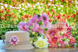 2588H-Dahlias Bouquet and Straw hat