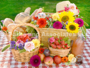 2795-Dahlia-Sunflower-Strawberry-Baskets-Straw Hat-on Picnic