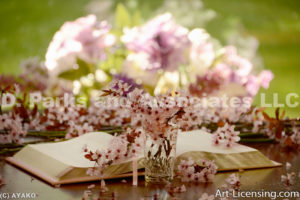 4147-Cherry Blossom and Book