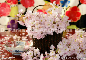 4262-Cherry Blossoms