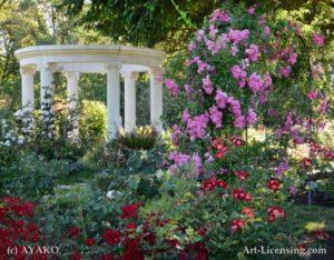4507-Gazebo in the Rose Garden