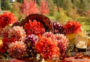 7433 Dahlia Pumpkin Autumn