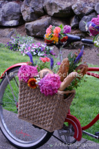 9070S-Flower Bouquet on the Bycicle