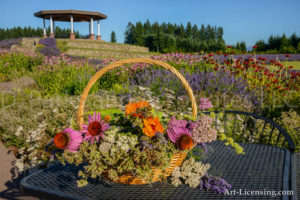 Flower Basket in Lavender Field with Gazebo