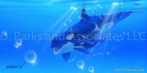 Dolphin - My Son 2