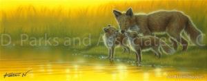 Fox - The Evining Glow