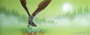 Hawk - Hunting