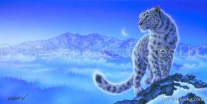 Snow Leopard-Beginning