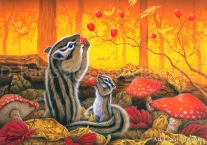 Squirrel - Harvest
