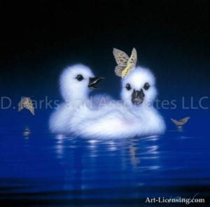 Swan - White Angels