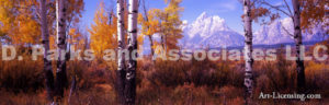 Tetons Wyoming-Autumn