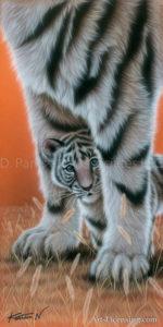 Tiger--Shy