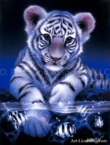 Tiger-White Baby Tiger