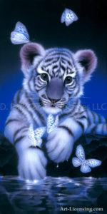 Tiger - White Baby Ttiger 2