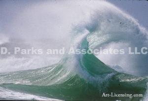Wave-61