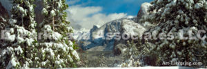 Yosemite Powder