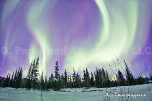 Alaska Aurora 1 (115)