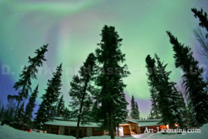 Alaska Aurora 1 (30)