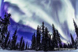 Alaska Aurora 1 (81)