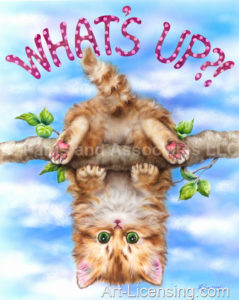 What's Up-Upside Down Kitten