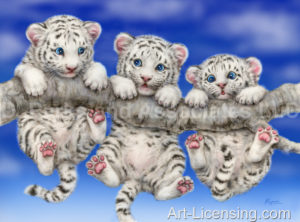 White Tiger Cub-Triplets
