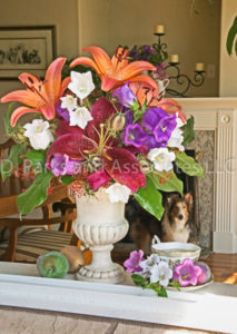 00028-Summer Liliy Flower Bouquet with Bebe Dog