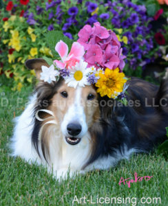 0604-Flowers on-Bebe Sheltie Dog-by AYAKO