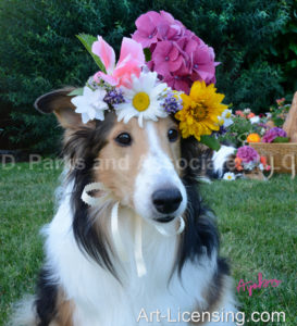 0675-Flowers on Bebe Sheltie-Dog-by AYAKO