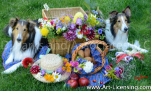 1571-Flower Picnic with Sheltie dogs-by AYAKO