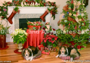 1962-Christmas Decoration Room with Sheltie Dogs-by AYAKO