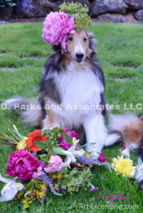 8413-Flower Bouquet and Peony flower on Bill Sheltie Dog Head-by AYAKO