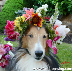 8730-Spring Flower Crown on Bill Dog-by Ayako