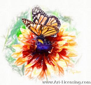 1030GH-SRH- Butterfly on Rudbekia