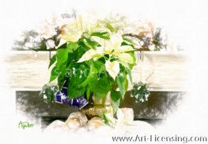 2420SRH-Christmas White Poinsettia