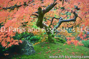 7673SART-Fall Colored Leaves Maple Tree