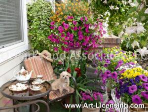 8955S-Petunia Balcony Teatime with Miniature Poodle