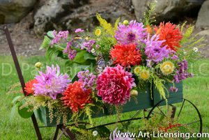 2057S-Dahlias and the Butterflies on Green Wagon