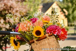 2342S-Dahlias and Sunflowers Bouquet